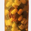 Elderly Drug Use by George Mattei