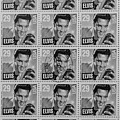 Elvis Commemorative Stamp January 8th 1993 Painted Bw by Rich Franco