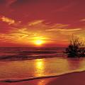 Evening Beach by Gouzel -