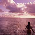 Fiji, Wakaya Island by Larry Dale Gordon - Printscapes