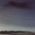Film Noir Charlton Heston Lizabeth Scott Dark City 1950 Casa Grande Arizona 2000 by David Lee Guss
