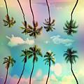 Florida by Mark Ashkenazi