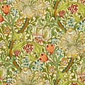 Golden Lily by William Morris