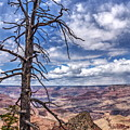 Grand Canyon National Park - South Rim by Onie Dimaano