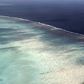 Great Barrier Reef In Australia by Carl Purcell