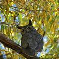 Great Horned Owl by Teresa Stallings