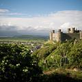 Harlech Castle, Snowdonia, Gwynedd, North Wales, Uk by Keith Morris
