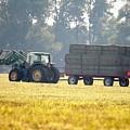 Hauling Hay At Dusk by J McCombie