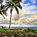 Hawaii Pardise by W Scott McGill