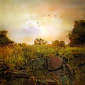 Hilltop Meadow by Jessica Jenney
