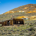 Homestead, Bodie Ghost Town by John Bosma