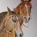 2 Horses by Gary Thomas