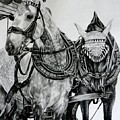 2 Horses Of Rothenburg 2000usd by Karen Bowden