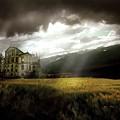 House by Bert Mailer