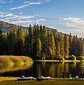 Hume Lake by David Barile