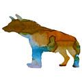 Hyena by Steph J Marten