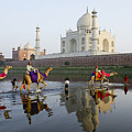 India's Taj Mahal by Michele Burgess
