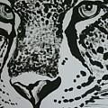 Jaguar by Sasa Delic