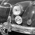 Jaguar Xk Series by Neil Zimmerman