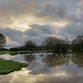 Janesmoor Pond - New Forest by Joana Kruse