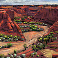 Junction Canyon De Chelly by Donald Maier