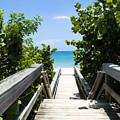 Juno Beach Florida by Allan  Hughes