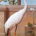 kb Marks Henry-Indian Crane Bullfinch and Thrush Henry Stacy Marks by Eloisa Mannion