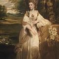 Lady Bampfylde by Joshua Reynolds