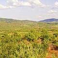 Landscape In Tanzania by Marek Poplawski