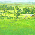 Landscape 2 by Yoseph Abate