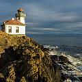 Lime Kiln Lighthouse by Stephanie McDowell
