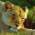 Lioness by Nadezhda Zhuravleva