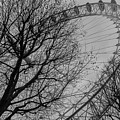 London Eye by Arild Lilleboe