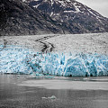 Magnificent Sawyer Glacier At The Tip Of Tracy Arm Fjord by Alex Grichenko