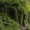 Malanaphy Springs by Mitsubishiman