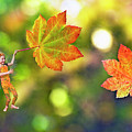 Maple Leaves by Buddy Mays