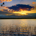 Mcintosh Lake Sunset by James BO Insogna