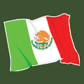 Mexico Flag by Frederick Holiday