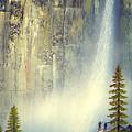 Misty Falls by Frank Wilson