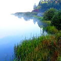 Misty Morning Big Ditch Lake by Thomas R Fletcher
