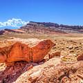 Moab by Brett Engle