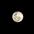 Moon by Fabio Seda
