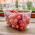 Morello Cherries by Alain De Maximy