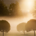 Morning At Golf Course by Lasse Ansaharju
