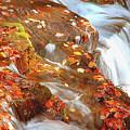 Mountain Stream In Autumn by A Gurmankin