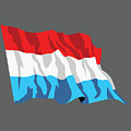 Netherlands Flag by Frederick Holiday