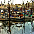 Newport Marina by Diana Powell