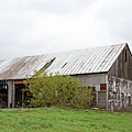 Old Weathered  Barn  by Nadine Mot Mitchell