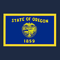 Oregon Flag by Frederick Holiday