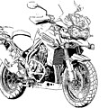 Original Motorcycle Portrait, Gift For Biker, Black And White Art by Drawspots Illustrations